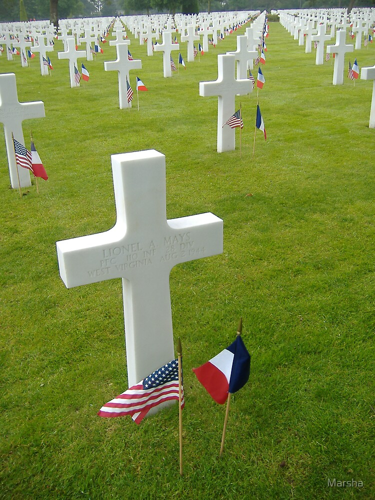 Crosses as far as the eye can see, June 6, 2007,  France by Marsha