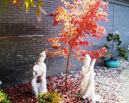 Chinese Gardens - Bendigo, Vic. by EdsMum