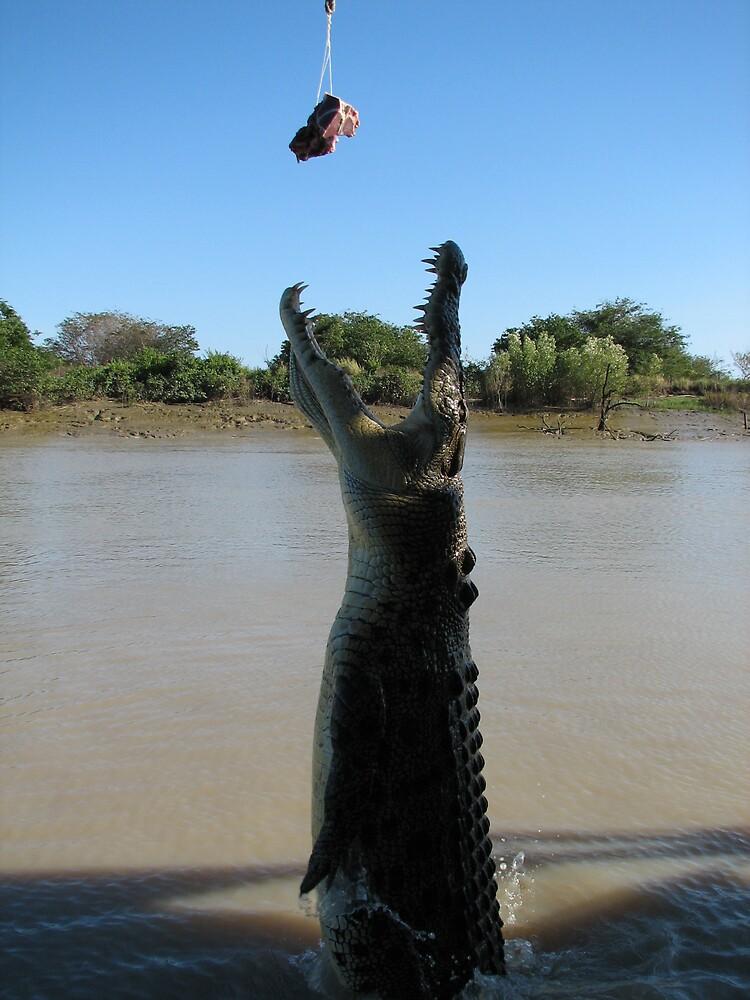 Jumping croc by kooljunk