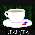 Realitea - Matrix Parody by Hannah Sterry