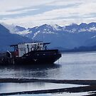 North to Alaska by spig