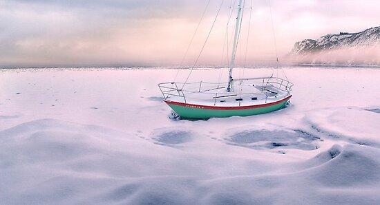 Memories of Seasons Past - Prisoner of Ice by John Poon