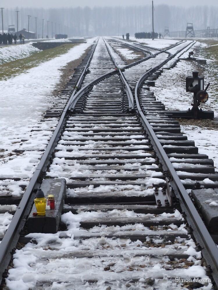 Railway Tracks (2005) by Simon Mears