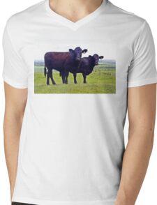 Cley Cows A Mens V-Neck T-Shirt