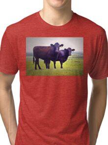Cley Cows B Tri-blend T-Shirt