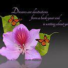 Orchidee und Schmetterlinge auf Schwarzem von Irisangel