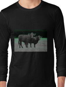 Cley Cows C Long Sleeve T-Shirt