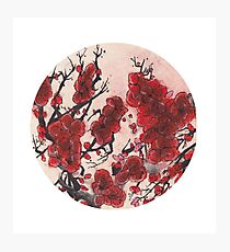Red Cherry Blossom Circle Photographic Print