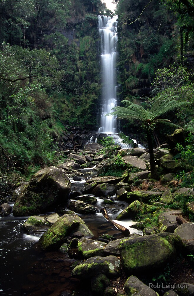 Erskine Falls by Rob Leighton