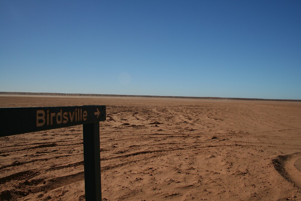 Way To Birdsville by Bronwyn  Murphy