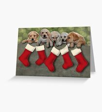 Puppy Greetings Greeting Card