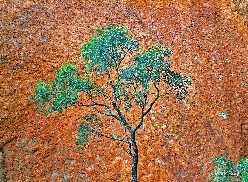 Uluru Detail #3 by Mark Boyle