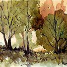 Black Wattle trees by Maree Clarkson