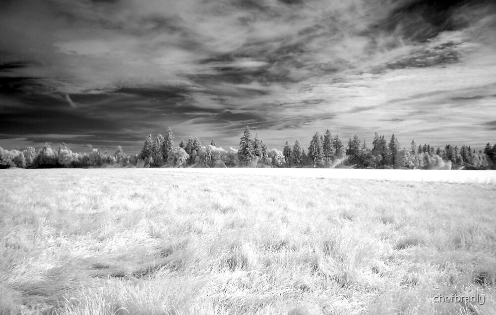 Infrared Field by chefbradly