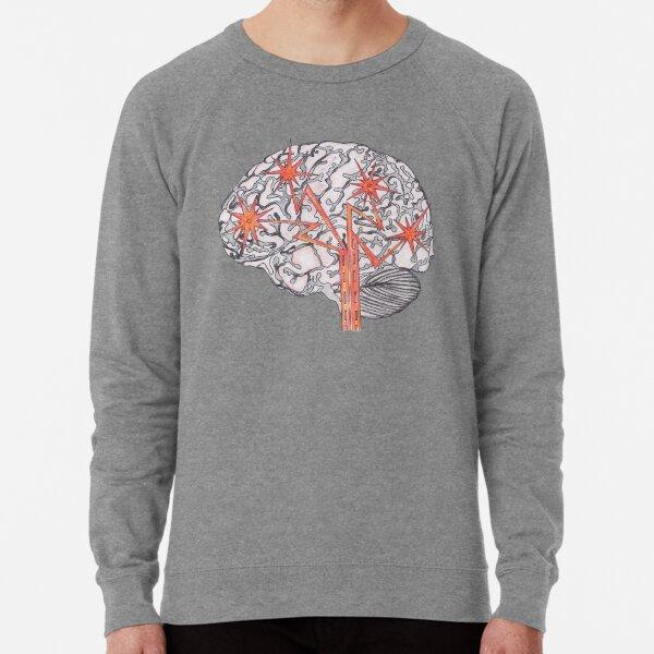 Brain Plasticity Lightweight Sweatshirt