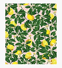 Lemonade II #redbubble #decor #buyart Photographic Print