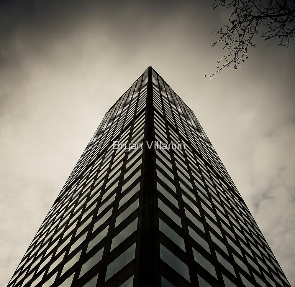 twigs vs concrete-metal-glass by Bryan Villamin