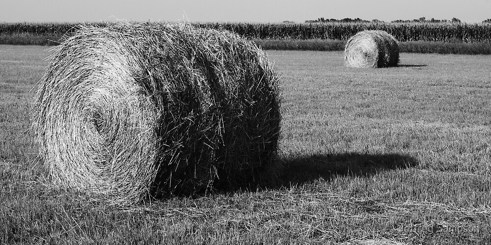 Twin Bails by Jeffrey Sampson
