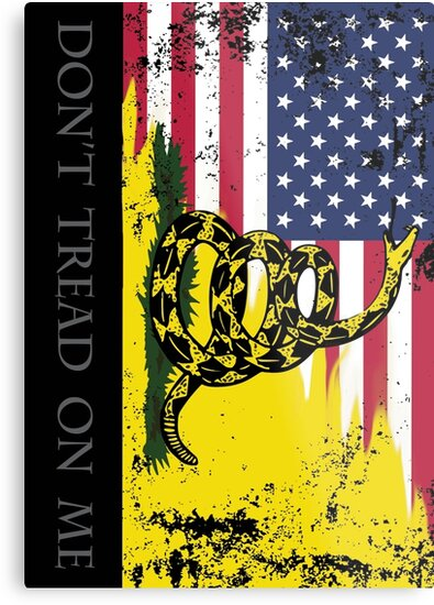 Amerikanische Gadsden-Flagge getragen von misterspotswood