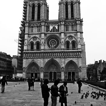 Notre Dame by jjsgraphics