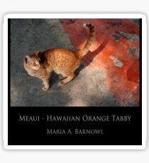 Meaui - Cool Stuff Sticker
