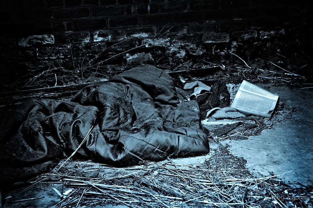 The Homeless' Hilton - Vacancies by Reg  Lyons