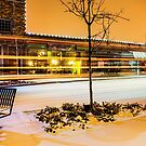 Redmond Winter Nights by Richard Bozarth