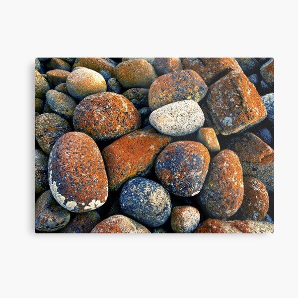 The Red Rocks Metal Print