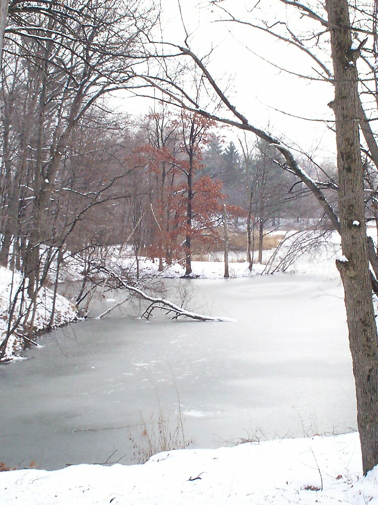 Frozen Pond by xubee