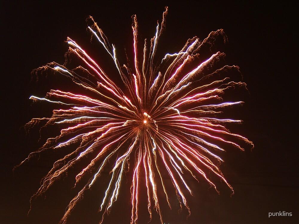 Firework1 by punklins