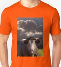 Bull before the Storm Unisex T-Shirt
