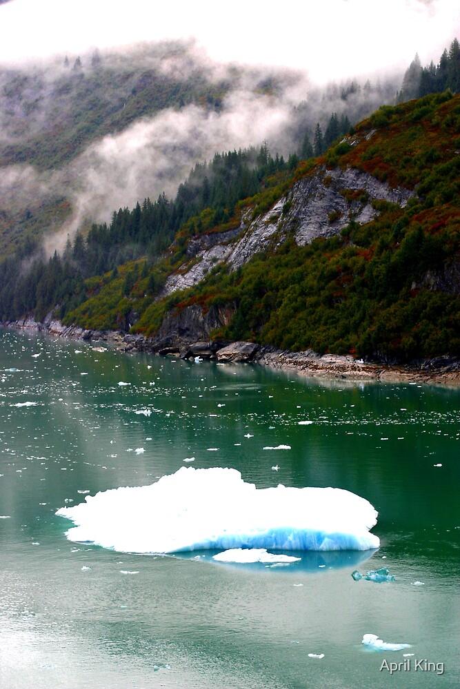 Iceberg In Alaska by April King