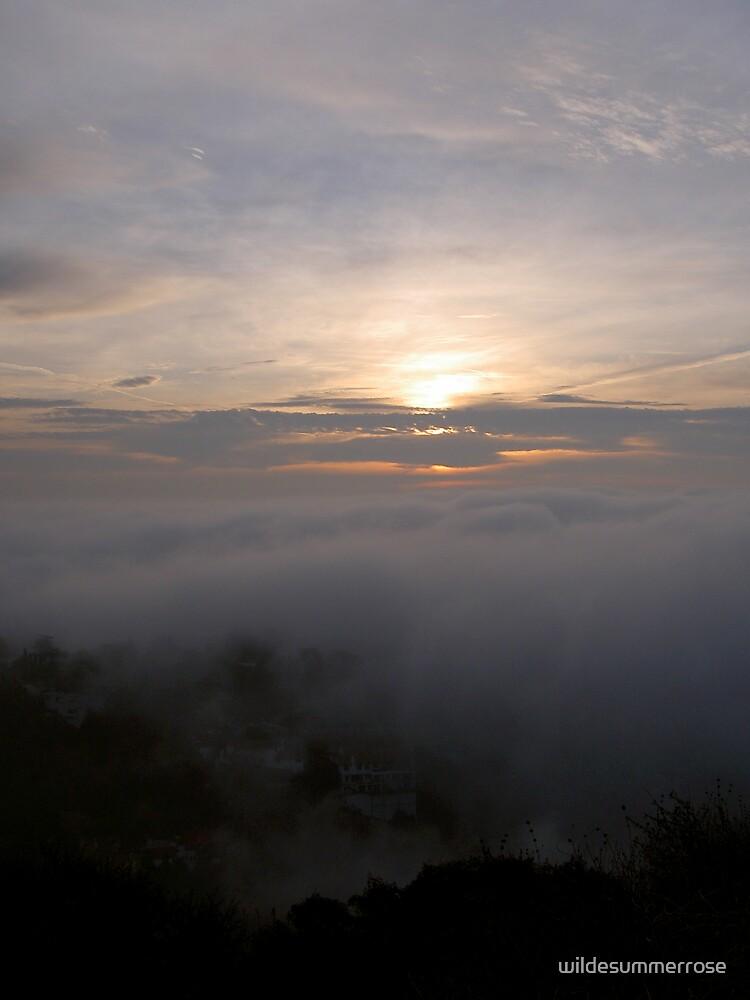 Morning Mysteries by wildesummerrose