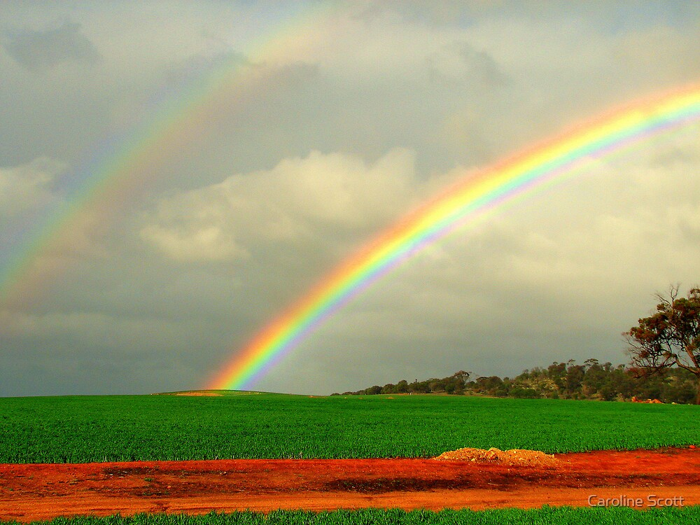 Two pots of Gold! by Caroline Scott