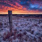 Winter Views by IanMcGregor