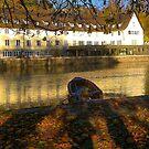 Stockerkahn in Autumn by L Lee McIntyre