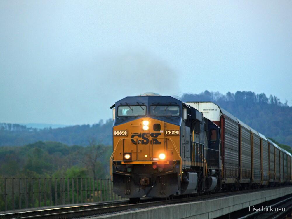 train by Lisa hickman