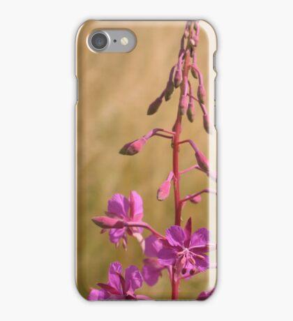 Purple meadow flower iPhone Case/Skin