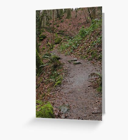 Up the woodland path Greeting Card