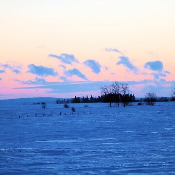 Winter landscape at Sundown by NicoleK-design