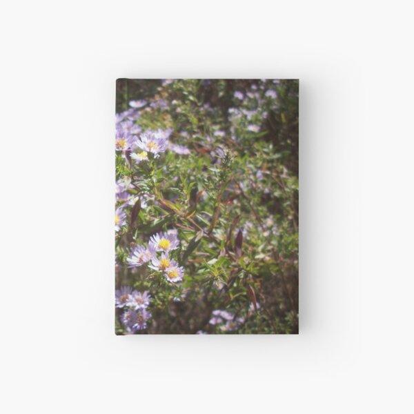Delicate Violet Hardcover Journal