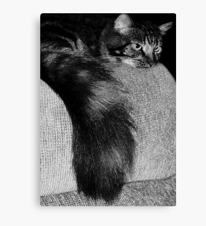 Bushy Tail!  Canvas Print