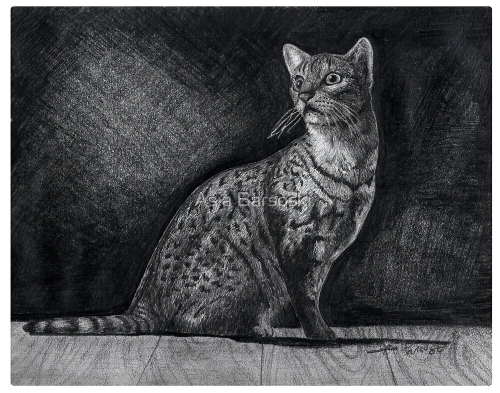 Alert Bengal Cat by Asia Barsoski