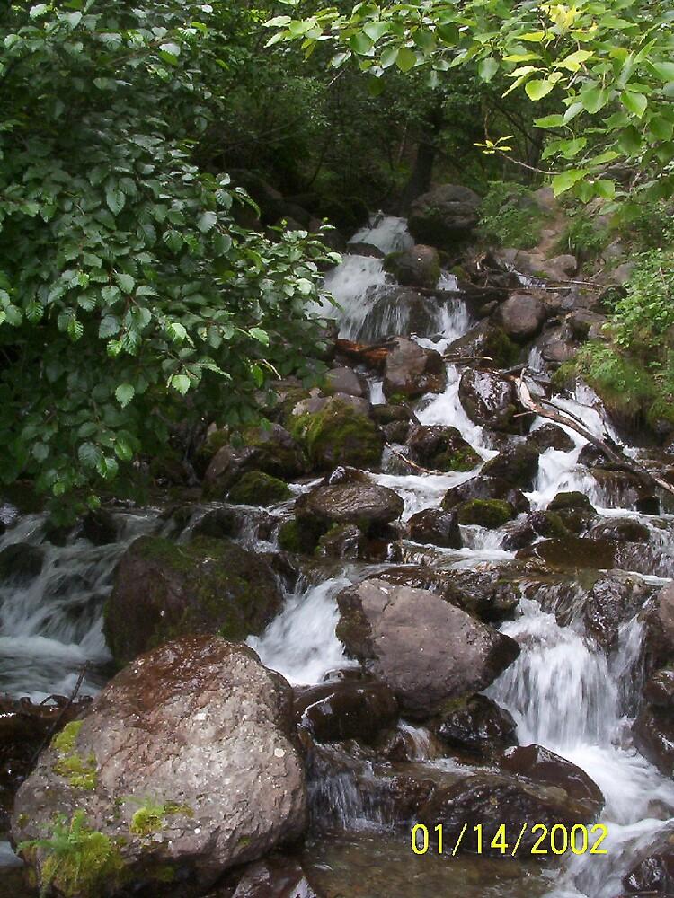 water by akeagle1999