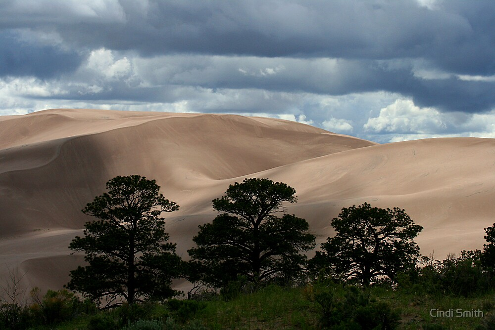 Great Sand Dunes by Cindi Smith