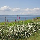 Kintyre View by Kat Simmons