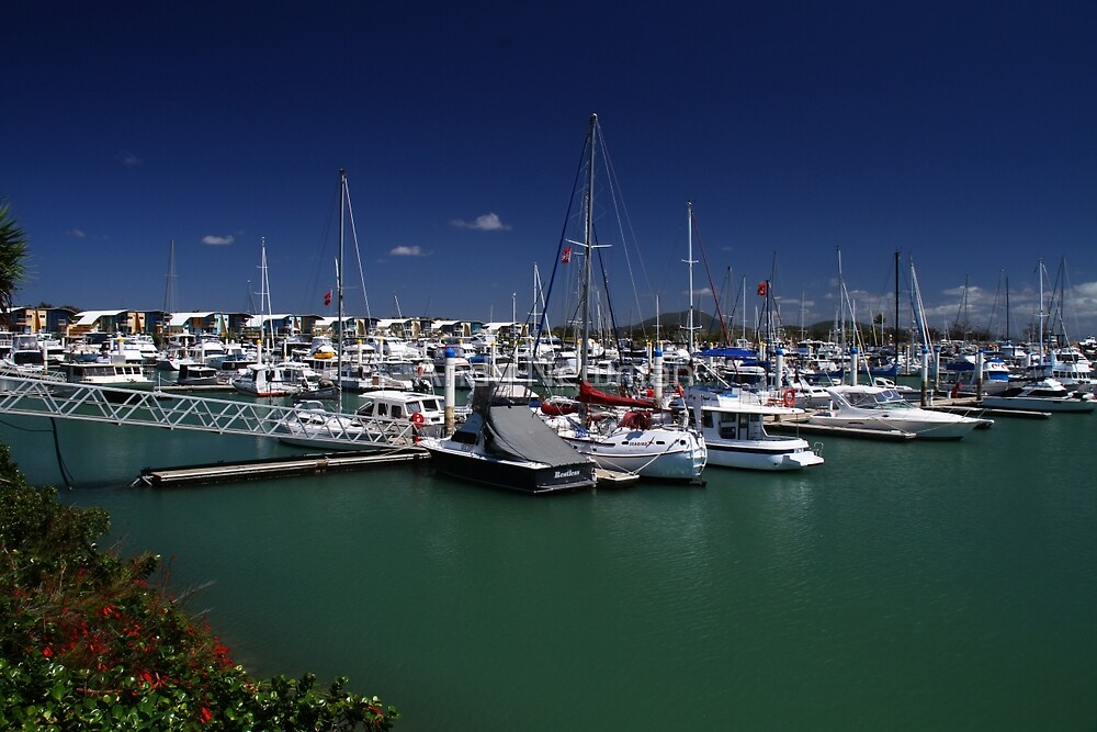 Keppel Bay Marina, Queensland, Australia. by Andy Newman