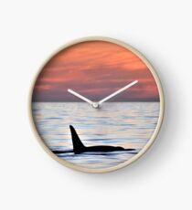 Reloj Orca Sunset