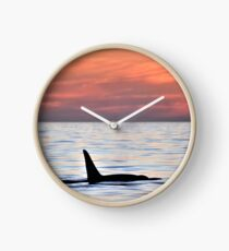 Orca Sunset Clock