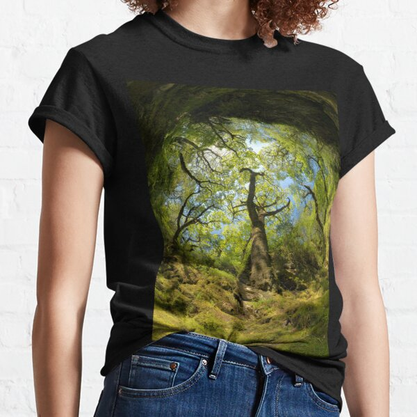 Ness Glen, Mystical Irish Wood Classic T-Shirt
